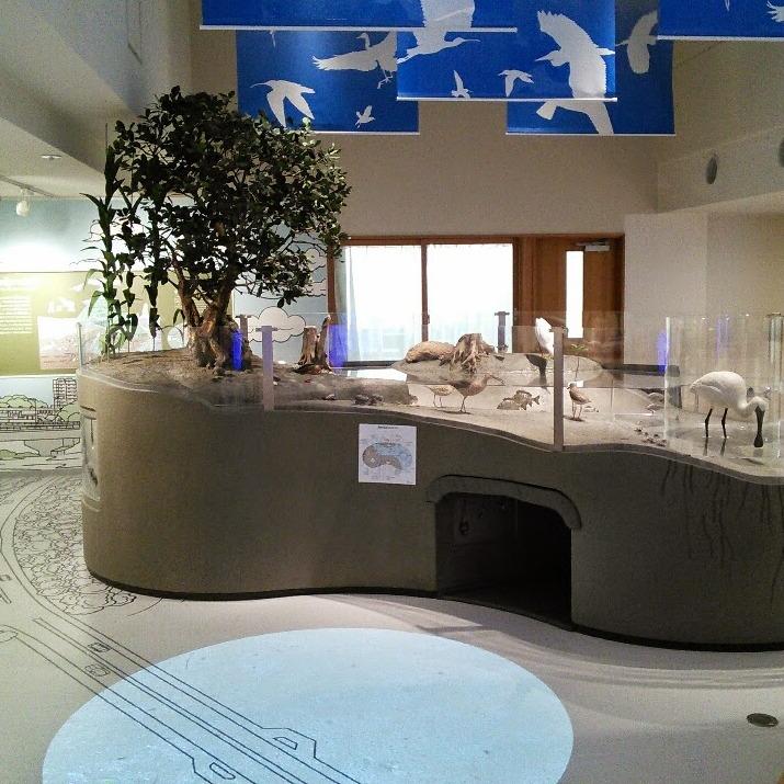 1F 常設展示室 ジオラマ2
