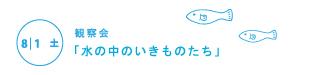 漫湖自然学校2015web_15